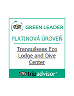Tripadvisor platinum Green Leader
