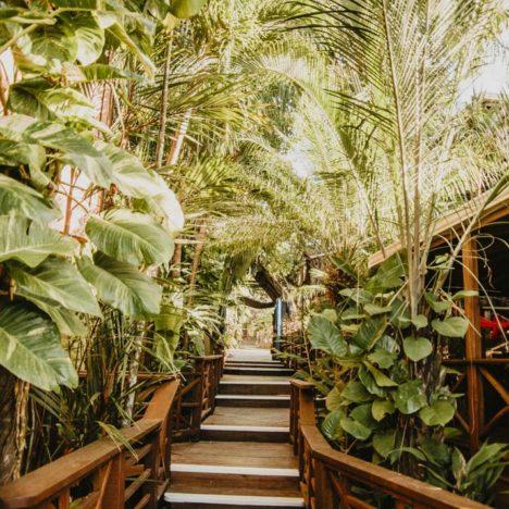 Okouzlující tropická zahrada
