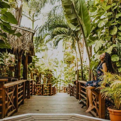 Pokochejte se tropickou zahradou v Tranquilseas