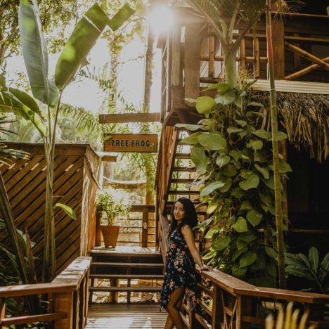 Tranquilseas Hotel Resort Roatan - pokoj Tree Frog
